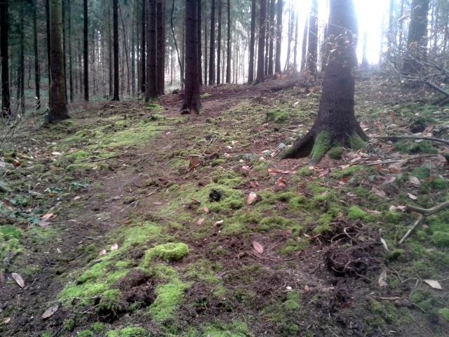 Contact avec un Esprit de la Nature (2)